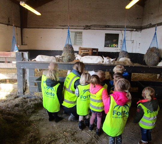 Forte Kinderopvang zet KDV Het Stokpaardje voort