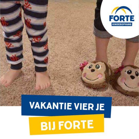 Kerstvakantie bij de Forte BSO's!