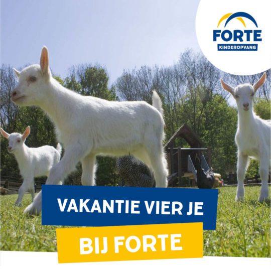Voorjaarsvakantie bij Forte