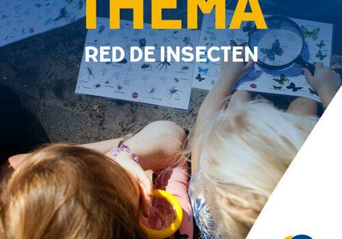 Activiteiten Zomer op het KDV: Red de insecten